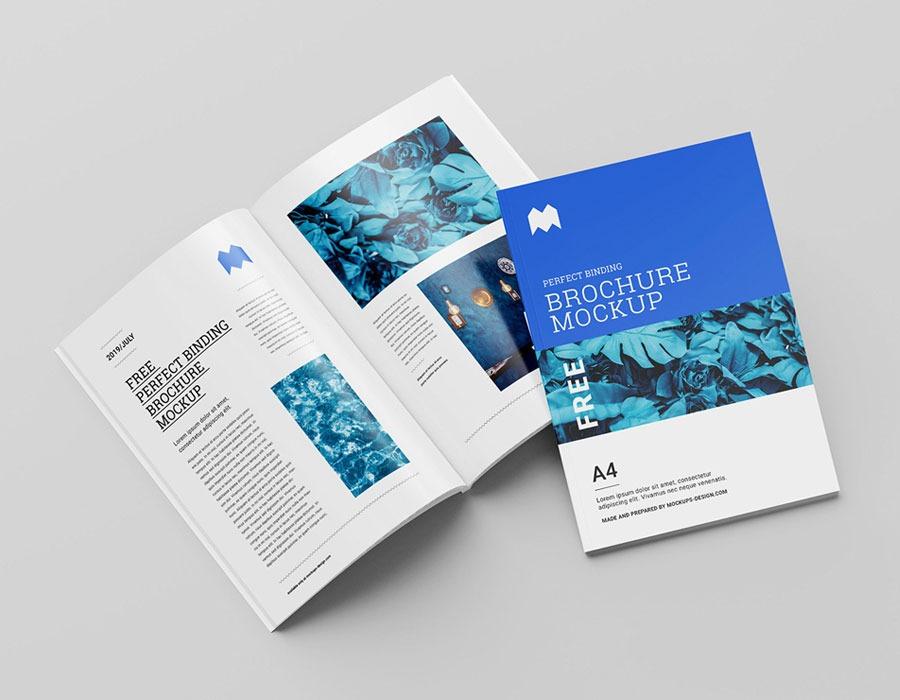 Tri-Fold Brochures Printing Dubai