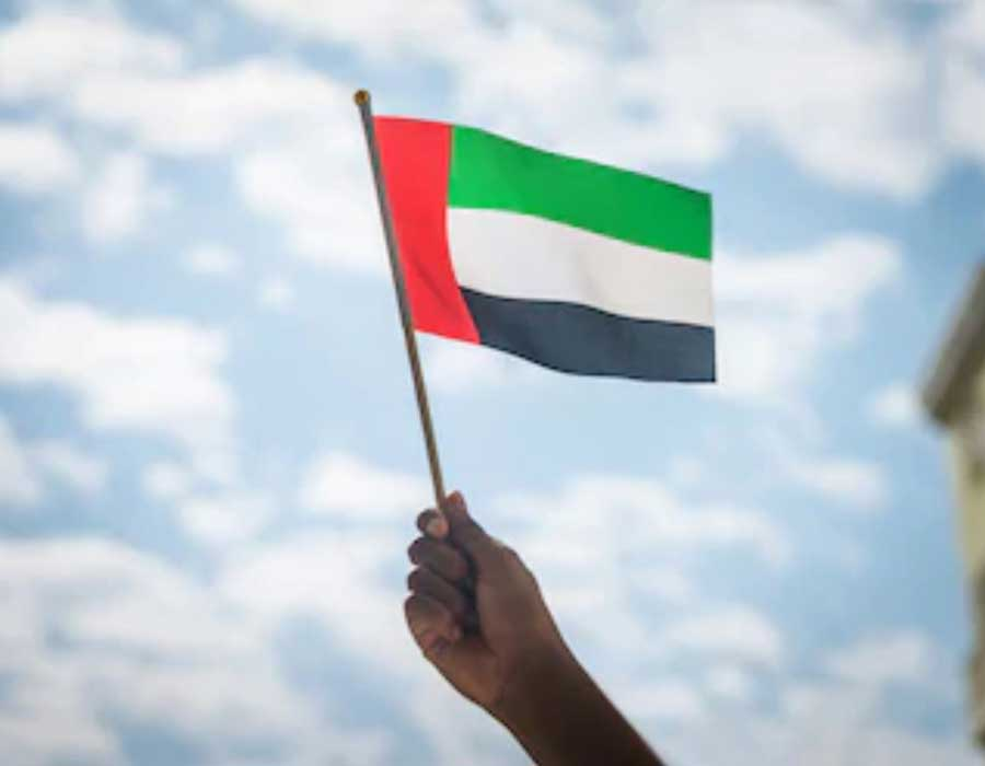 Hand-Held-Pole-Flags-Printing-Dubai
